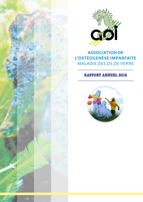 couv-web-rapport_nov16